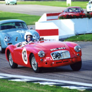 """GIVE ME GOODWOOD on a summer's day and you can keep the rest of the world"" – Roy Salvadori (Goodwood Revival, 2000)"